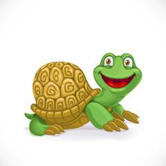 Cartoon baby turtle isolated on white background