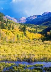 Wall Mural - Aspen Colorado Landscape