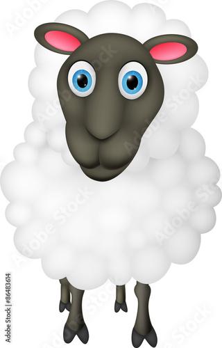 Happy Sheep cartoon
