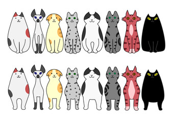 standing and sitting cats
