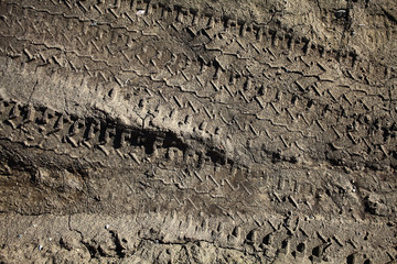 tire tracks on the dirt protector