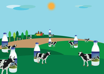 campagna con bovini al pascolo