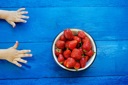 little hands reach for the strawberry