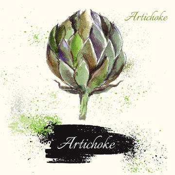 Artichoke in watercolor technique