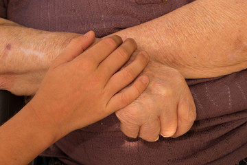 A young hand of a child touches and holds an old wrinkled hand