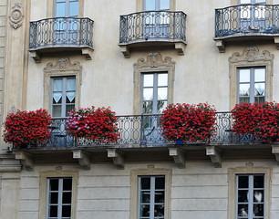 portes-fenêtres fleuries