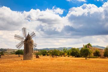 Deurstickers Molens Mühle auf Mallorca
