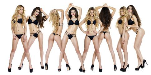 Beautiful sexy models, blonde and brunette in black underwear