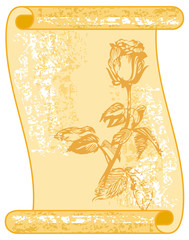 Paper scroll with hand drawn rose
