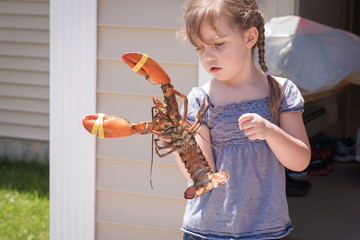 curious little girl holding live lobster