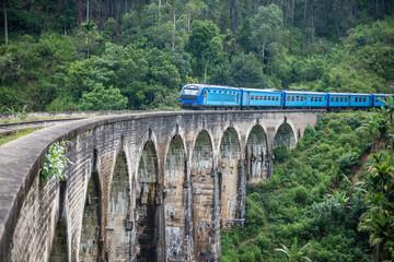 Train passing over Nine Arches Bridge in Demodara