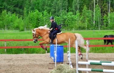 Woman horseback riding and show jumping