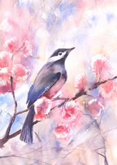 Water color drawing of a bird on a branch