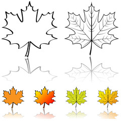 Black and white vector shapes of maple leaf