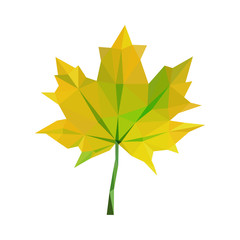 low-poly polygon yellow autumn maple leaves