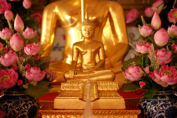 close-up gold buddha with pink lotus lateral