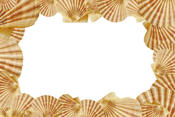 Seashell isolated picture frame