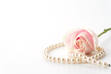 white and pink rose with necklace on white background