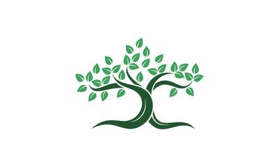 Green Shade Tree Vector Illustration
