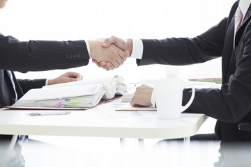 Salesman with a handshake at the office