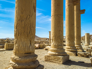 Columns of the Roman ruins of Palmyra, Syria