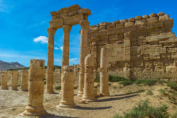 Columns of the Roman ruins of Palmyra, Syria. UNESCO World Heritage