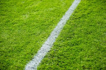Chalk line on sports field