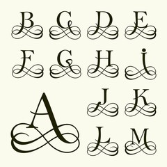 Set Capital Letter for Monograms and Logos. Beautiful  Font.