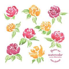 Vector Set  Red and Yellow Roses Watercolor