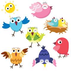 Cute Colorful Birds