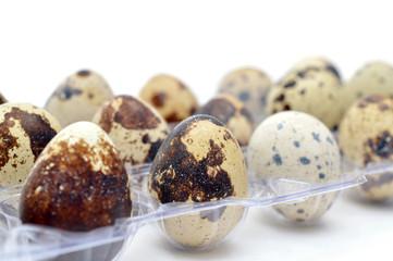 Quail eggs in a plastic box