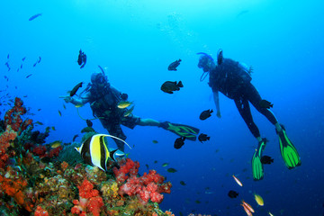 Scuba diving on coral reef underwater with fish