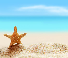 Starfish on seashore in tropical beach - summer holiday background