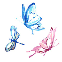 butterfly,watercolor design