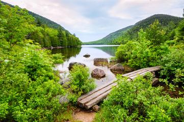 Printed kitchen splashbacks Natural Park Footbridge at Acadia National Park