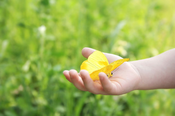 Child's Hand Holding Orange Barred Sulphur Butterfly Outside