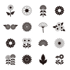 Chrysanthemum Daisy Marguerite icon set