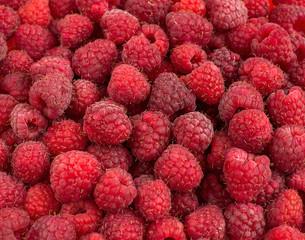 Ripe raspberry like a backgrounds