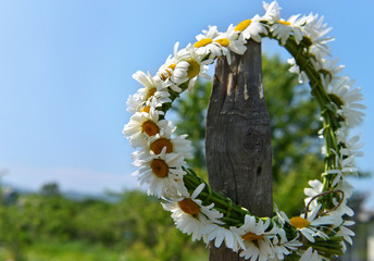 Summer still lie with wreath of daisy flowers against sky background