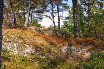 Nature of the small histotical Swedish town of Sigtuna
