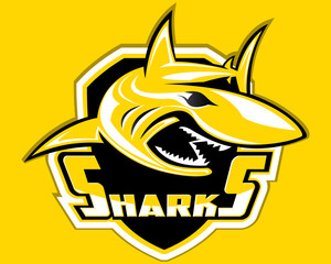 Shark Shield Sport Logo Vector