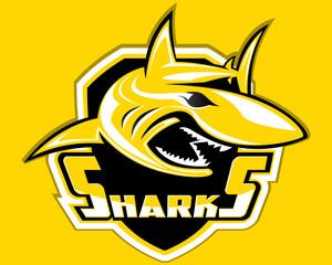 Shark Shield Sport Logo Vector
