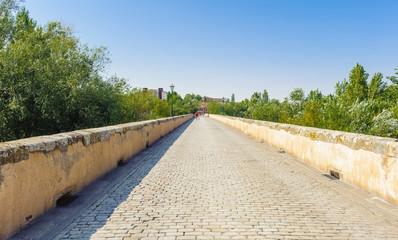 Roman bridge of Salamanca, Spain