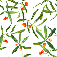 Watercolour sandthorn berries and leaves seamless pattern