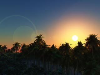 3D palm tree landscape at sunset