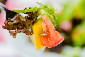 Salad, Lettuce, Food.