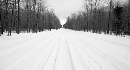 Desolate Country Backwoods Road Covered in Fresh Snow