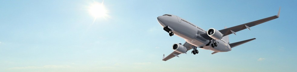 Modern Passenger airplane in flight panorama