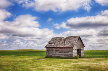 Old Shed In Iowa Field