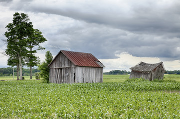 Two Farm Sheds In Ohio